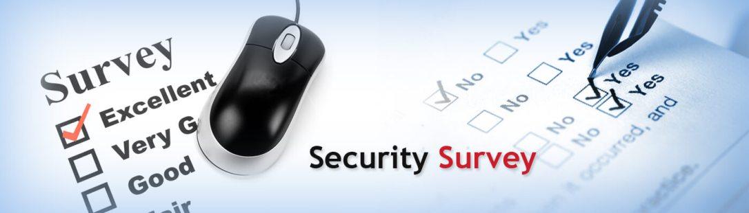0bc27_Security Survey