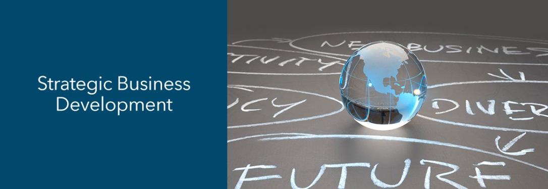 headers-strategic-business-development